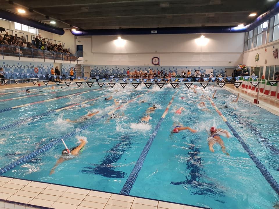 Nuotatori in azione