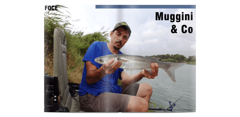 Muggini & Co